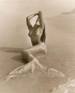 La Sirene e il marinao