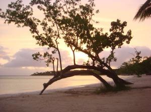 The Beach.......